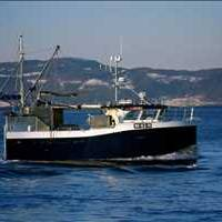 Global Commercial Fishing Vessels Market